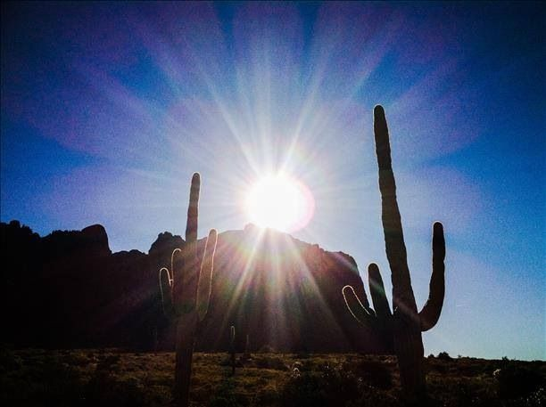 DESERT SUNRISE...affirming life-giving source... even in the driest conditions on earth.