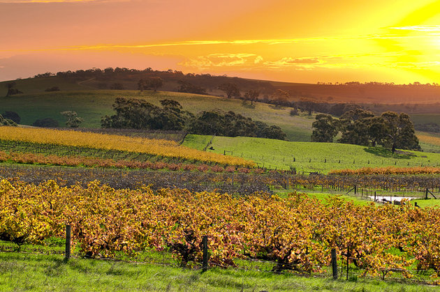 australia-south-australia-barossa-valley-2